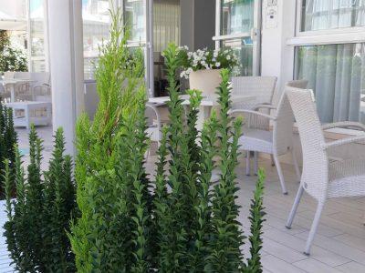 veranda-1000x563